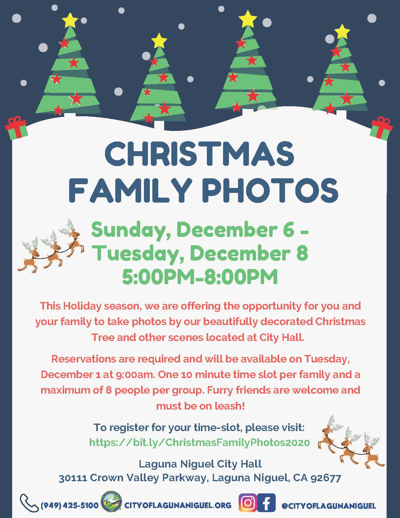 Christmas Family Photos Flyer 2020